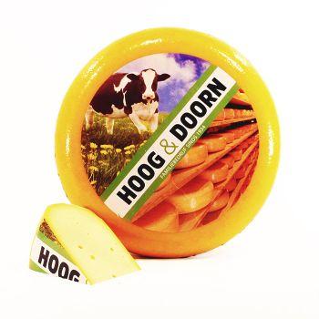Goudse jonge kaas | Hele kaas